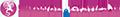 realizzazione siti internet ad arezzo e realizzazione grafica negozio ebay